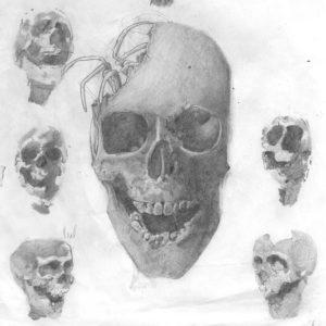 Skulls - Graphite on paper